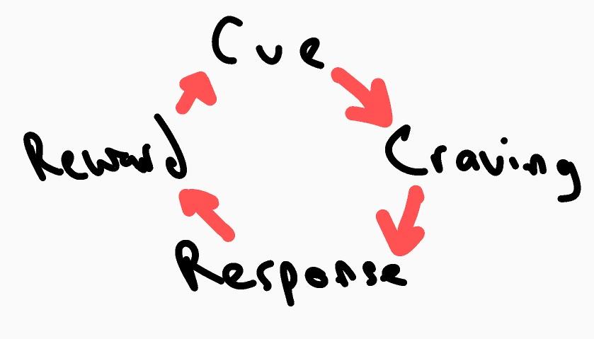 drawing that shows the habit loop: cue, craving, response, reward.